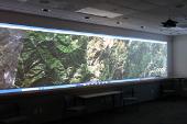 Ekran Goo w instytucie środowiska na Uniwersytecie w Kalifornii